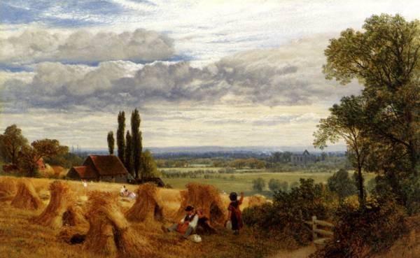 Harvesting Near Newark Priory Ripley Surrey